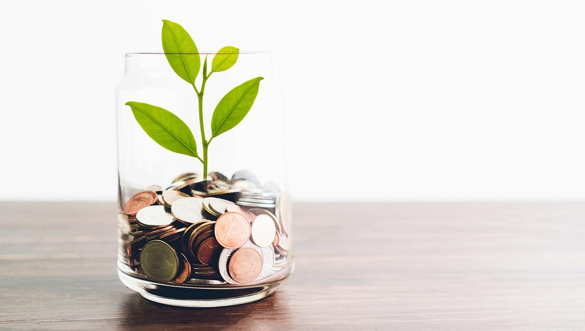 Grow Your Practice Revenue